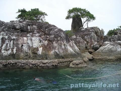 チャン島 (14)
