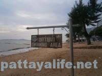 洪水後のジョムティエンビーチ (3)