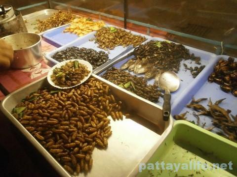 虫料理屋台 (1)