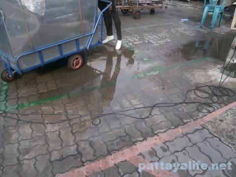 パタヤ雨降り2016年1月15日 (4)