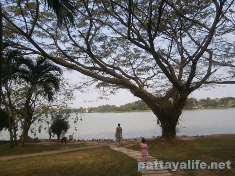ワットウィハンシアン横の池 (5)