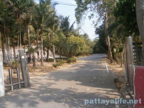 パタヤサインへの公園内の道