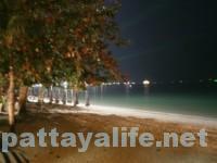 夜のパタヤビーチロード