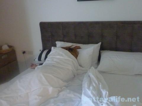 ゴーゴー嬢とコーナーロッジのベッド