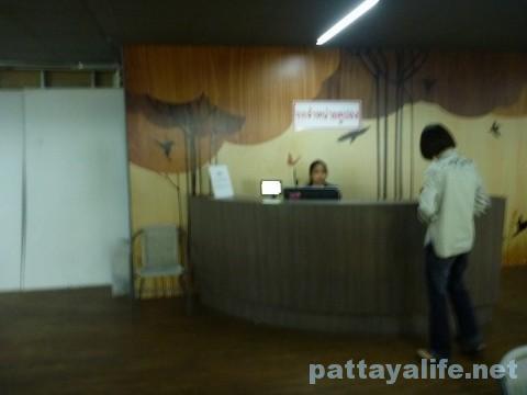 ドンムアン空港第2ターミナルのマジックガーデン (10)