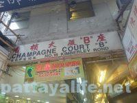 香港141香檳大廈B座 (8)