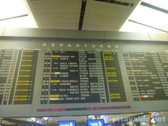 シンガポールチャンギ空港 (3)