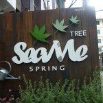 【予約開始】オープンしたてのシーミースプリング3(SEA ME SPRING TREE)内部を見学してきた