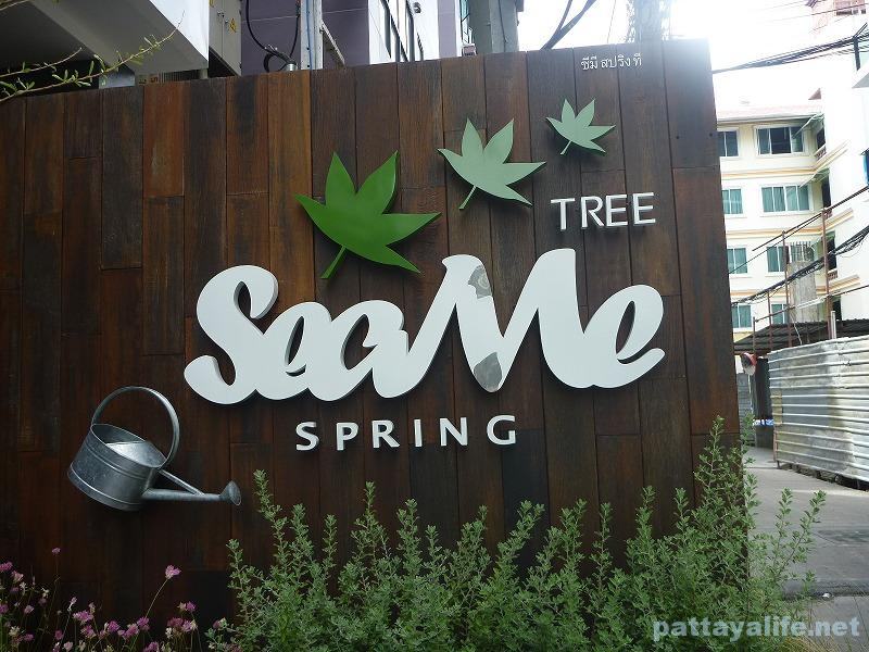 sea-me-spring-tree-5
