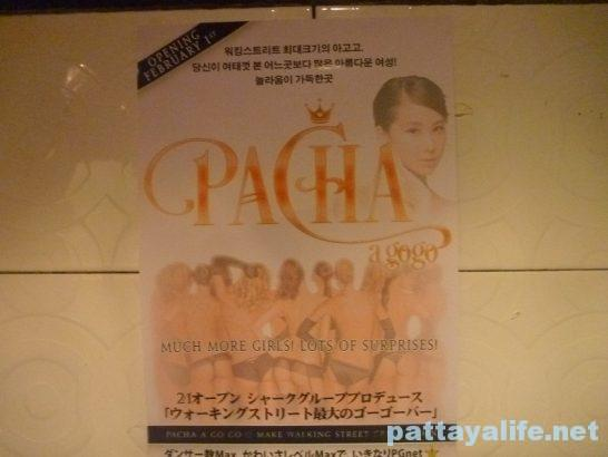 pacha-2