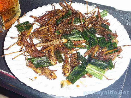 Fried insect