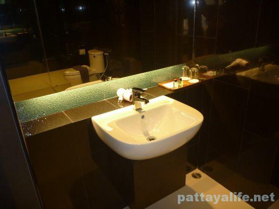 Asana hotel deluxe (5)