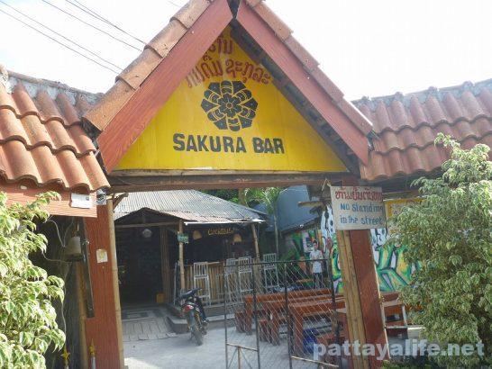 Sakura bar vangvien