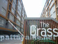 The grass pattaya (1)