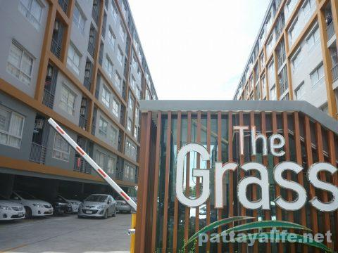 The grass pattaya (1)