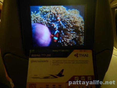 マニラからバンコクへTG625便 (4)