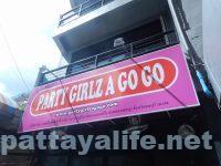 party girlz パーティガールズ (1)