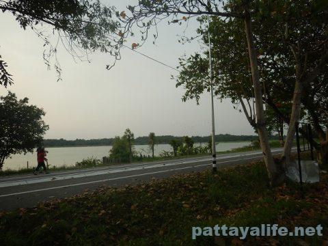 イーストパタヤダークサイドサイクリングロード (4)