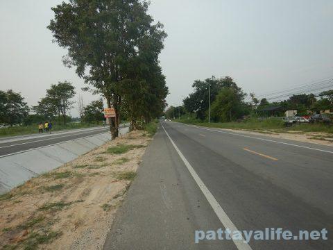 イーストパタヤダークサイドサイクリングロード (5)