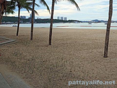 パタヤビーチ2020年5月 (7)