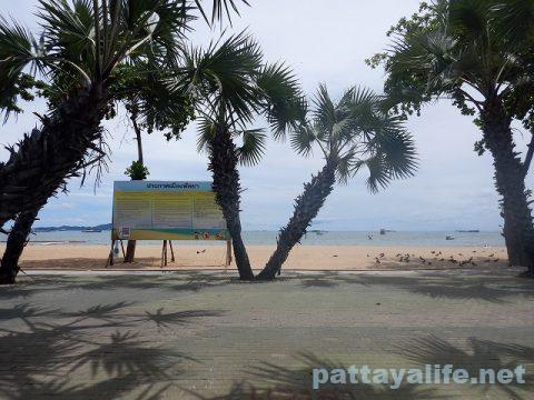 パタヤビーチ (1)